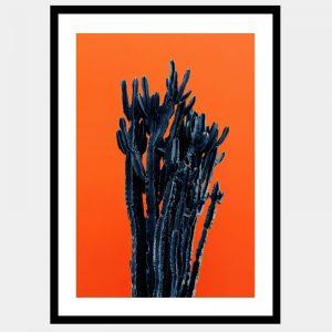 Barren Black Cactus - Flat Matte Black