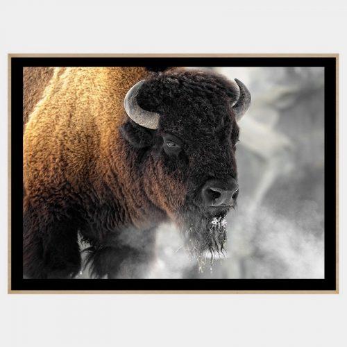 Buffalo Smoke - Boutique Gloss Black
