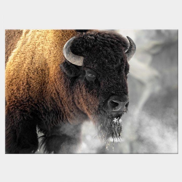 Buffalo Smoke Canvas -Front - No Frame