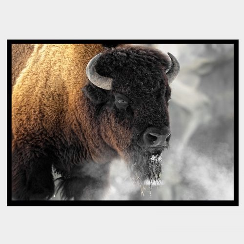 Buffalo Smoke - Flat Matte Black