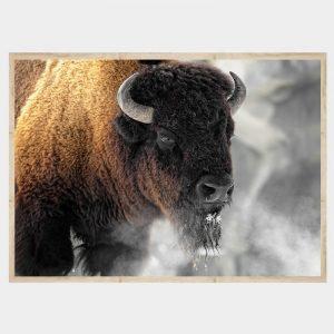 Buffalo Smoke - Flat Natural