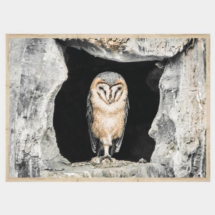Concrete Owl - Flat Natural