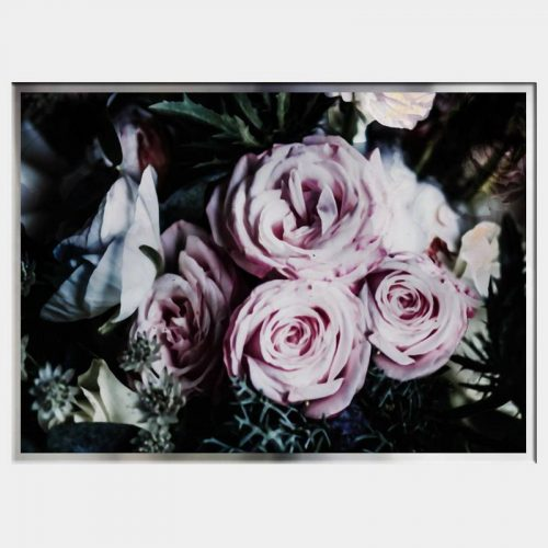 Darkness Roses - Flat Chrome