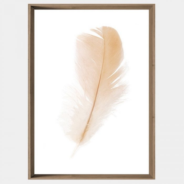 Freefall Feather - Caramel Angled