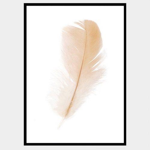 Freefall Feather - Flat Matte Black