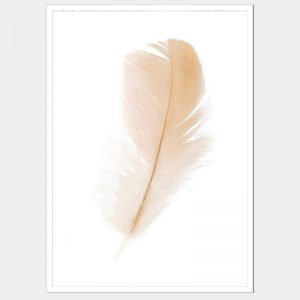 Freefall Feather - Flat Matte White