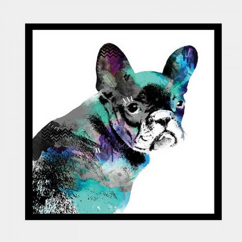 Frenchie - Flat Matte Black