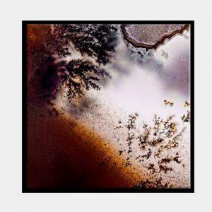 Frosty Rust Canvas - Black Box Frame
