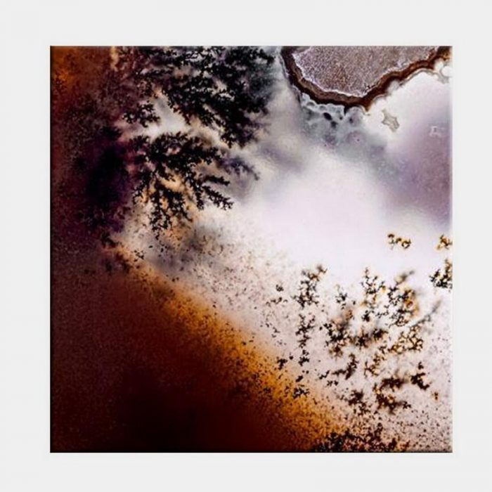 Frosty Rust Canvas - No Frame