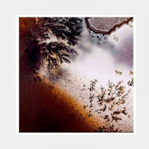 Frosty Rust Canvas - White Box Frame
