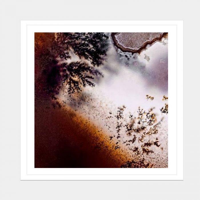 Frosty Rust - Flat Matte White