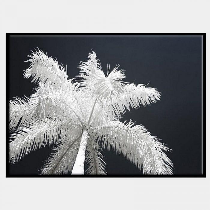 Ghost Palms Canvas - Black Box Frame