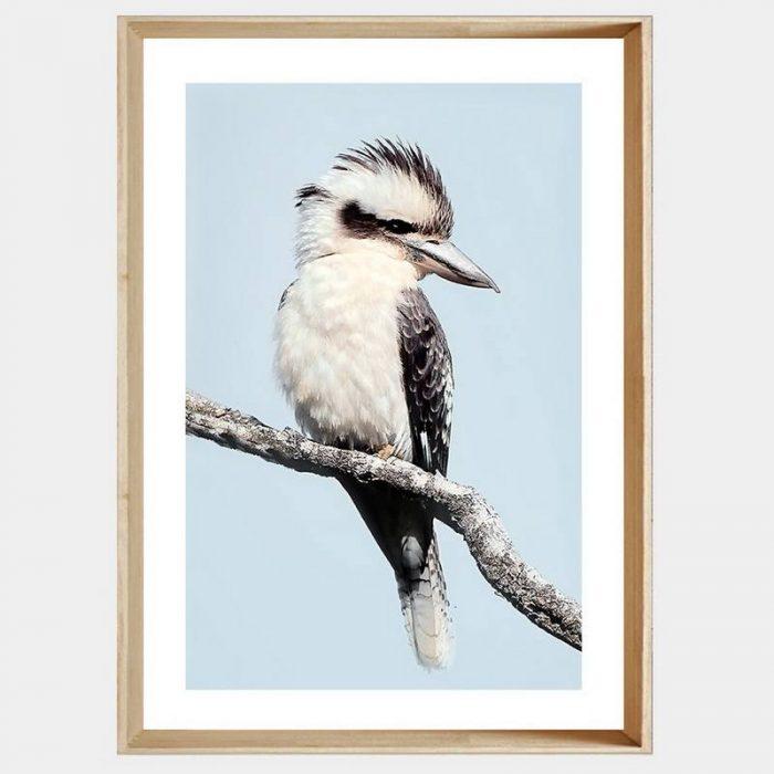 Kara The Kookaburra - Soft Natural Angled