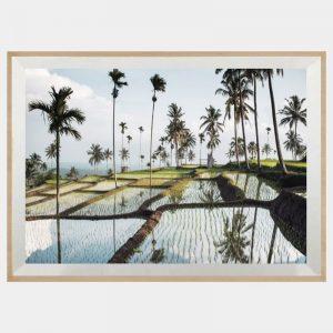 Lombok Fields - Boutique Gloss White