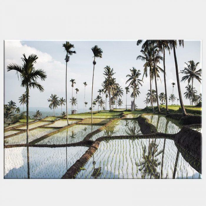 Lombok Fields Canvas - No Frame