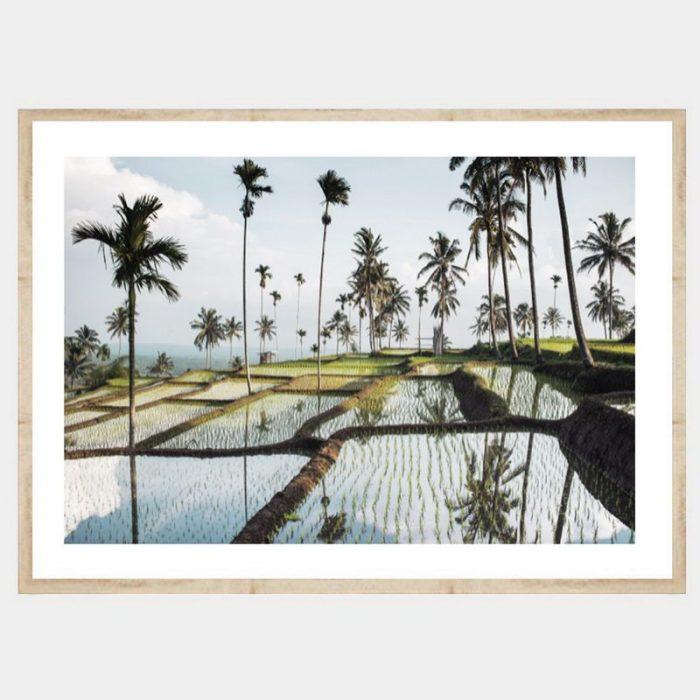 Lombok Fields - Flat Natural