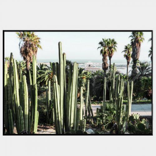 Mexica Canvas - Black Box Frame