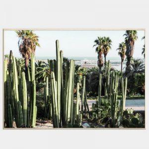 Mexica Canvas - Natural Box Frame