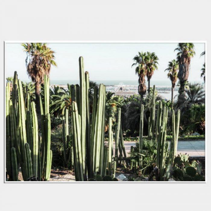Mexica Canvas - White Box Frame