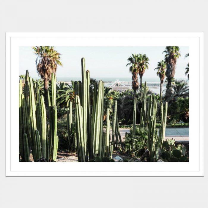 Mexica - Flat Matte White