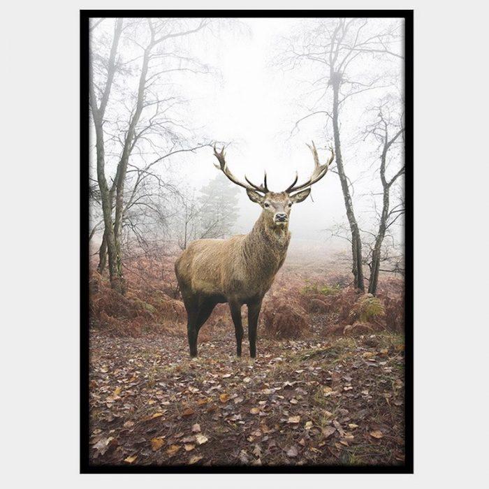 Mirkwood Stag Canvas - Black Box Frame