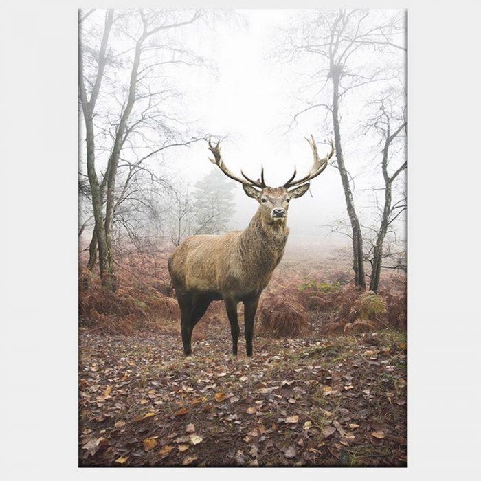 Mirkwood Stag Canvas - No Frame
