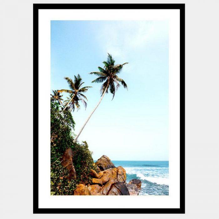 Paradise - Flat Matte Black