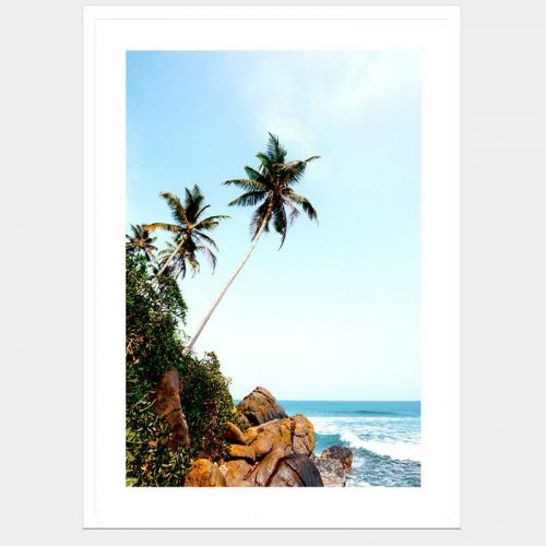 Paradise - Flat Matte White