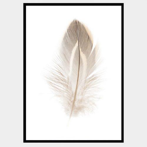 Plummet Feather - Flat Matte Black