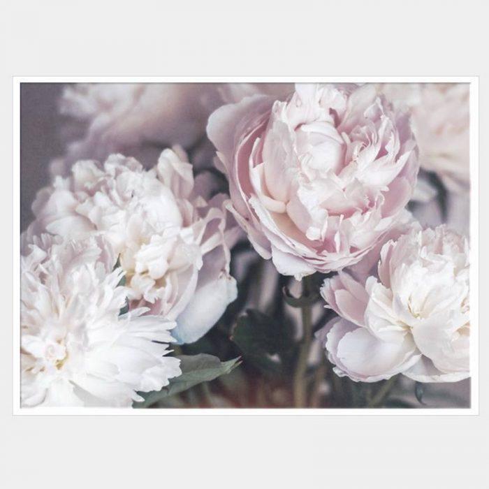 Serene Bunches Canvas - White Box Frame