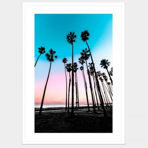 Sky-High Palms - Flat Matte White