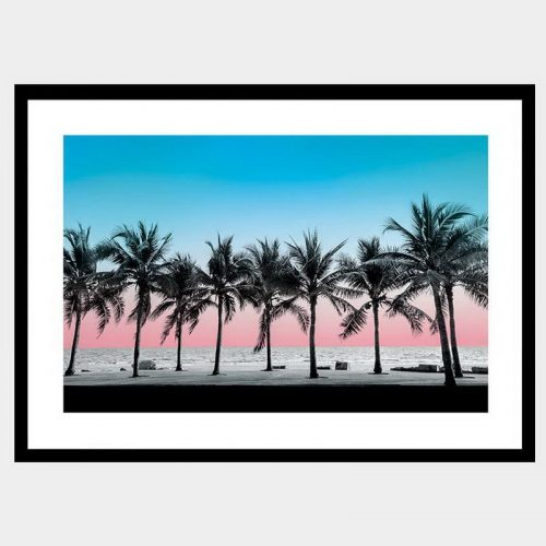 Summer Palms - Flat Matte Black