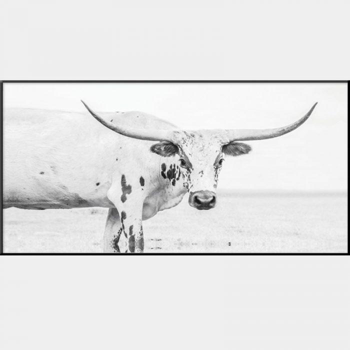 Texas Longhorn Canvas - Black Box Frame