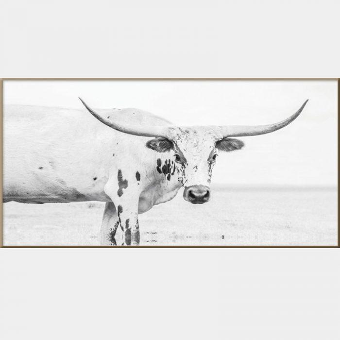 Texas Longhorn Canvas - Caramel Box Frame