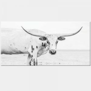 Texas Longhorn Canvas - No Frame