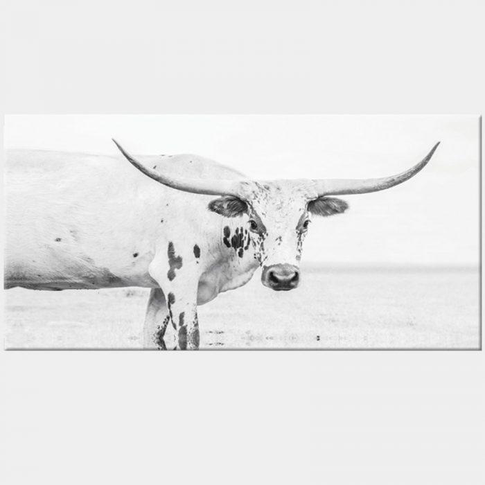 Texas Longhorn Canvas - No Frame
