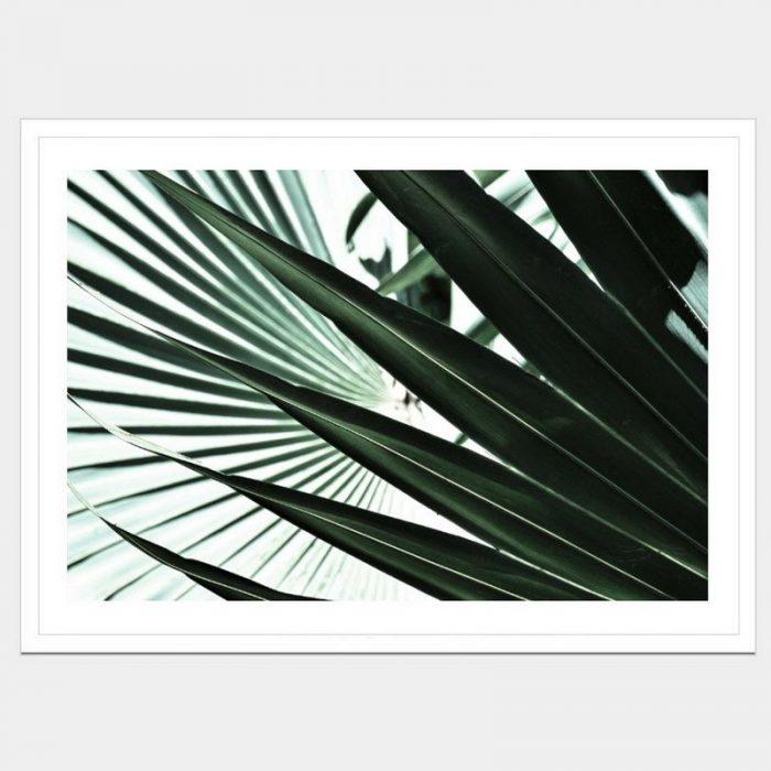 Tropic Fan - Flat Matte White