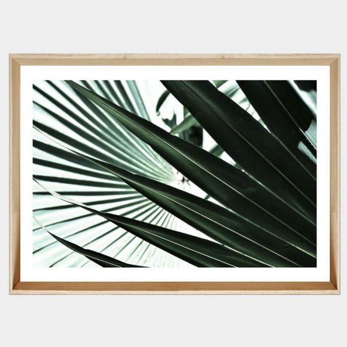 Tropic Fan - Soft Natural Angled